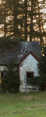 Abandoned house at Stewarts Point, California thumbnail