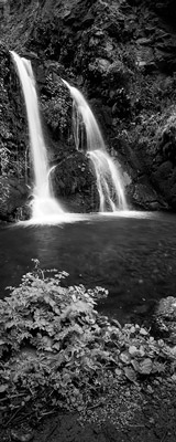Upper Alamere Falls in Point Reyes, California thumbnail
